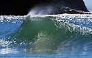 Wave Action - Two by Barbara Burkhardt