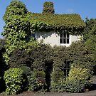 The Corner House by Steve plowman