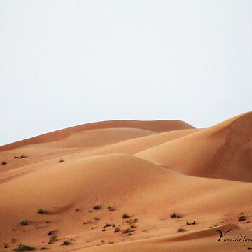Dubai Desert - UAE by Photograph2u
