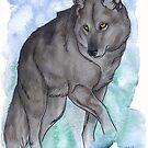 Grey Wolf  by Teresewa