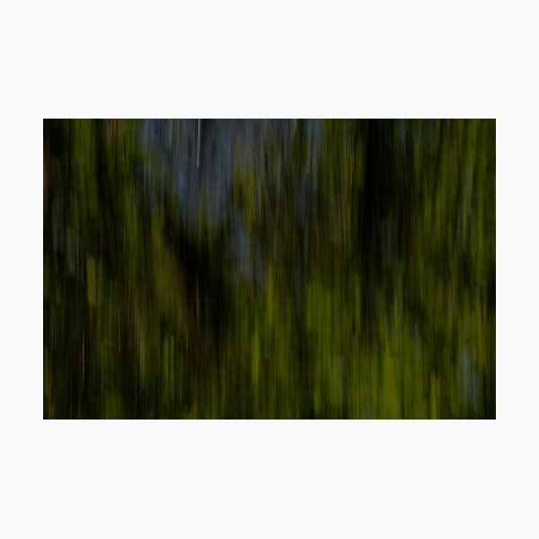 abstract green I Photographic Print