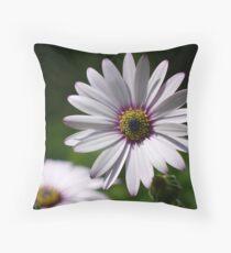 Osteospermum Throw Pillow