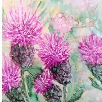 Canadian Thistle by GlennArt