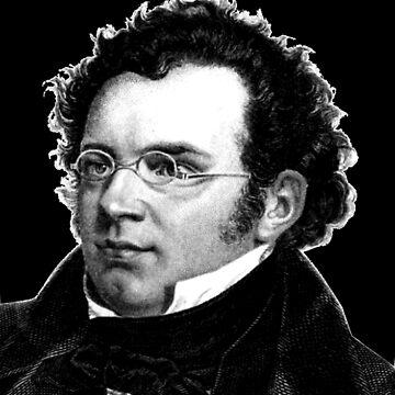 Franz Schubert - Great Composer by Thornepalmer