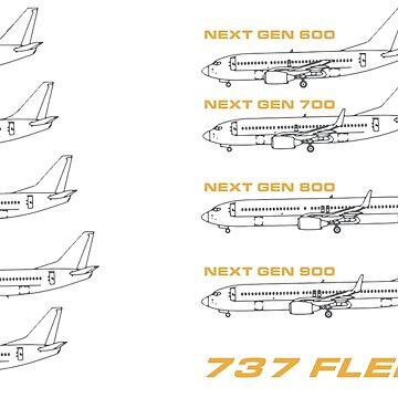 737 Fleet Horizontal by GetSpeedbird