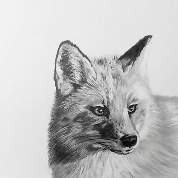 Black and white Fox by Croftsie