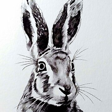 Hare by Croftsie