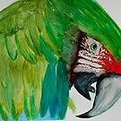 Macaw Green Parrot  by Mark Young