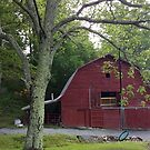 Spirit Ride - Red Barn in Late Spring by JRobinWhitley