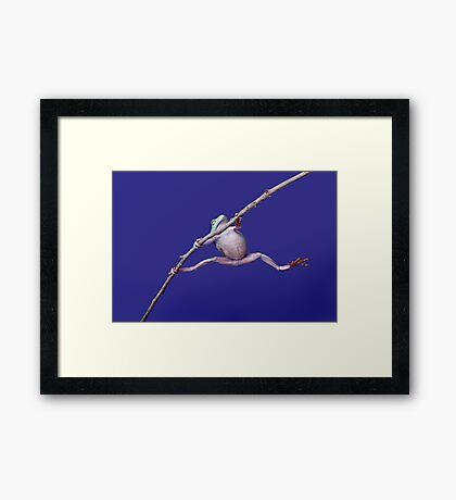 Pole Vault Framed Print