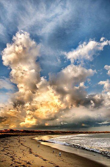 Sky Giants by Heather Prince