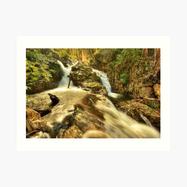 Nigothoruk Creek, Alpine NP Art Print