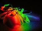 Rainbow Ballet by Veronica Schultz