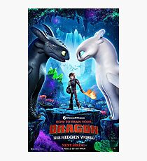 httyd 3 poster Photographic Print