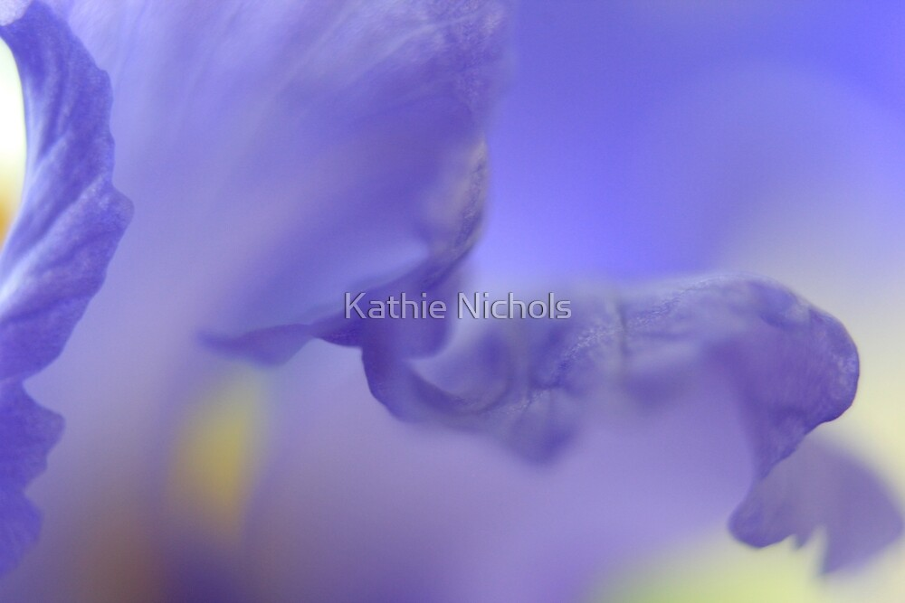Waiting on a Dream by Kathie Nichols