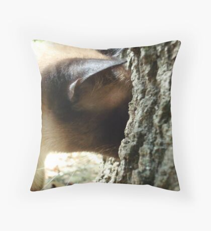 WHERE DID IT GO? Throw Pillow