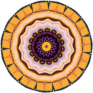 Life Cycles Mandala  by wildmirror