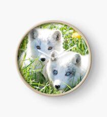 Arctic fox and kit Clock
