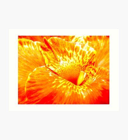 Colour Eruption Art Print