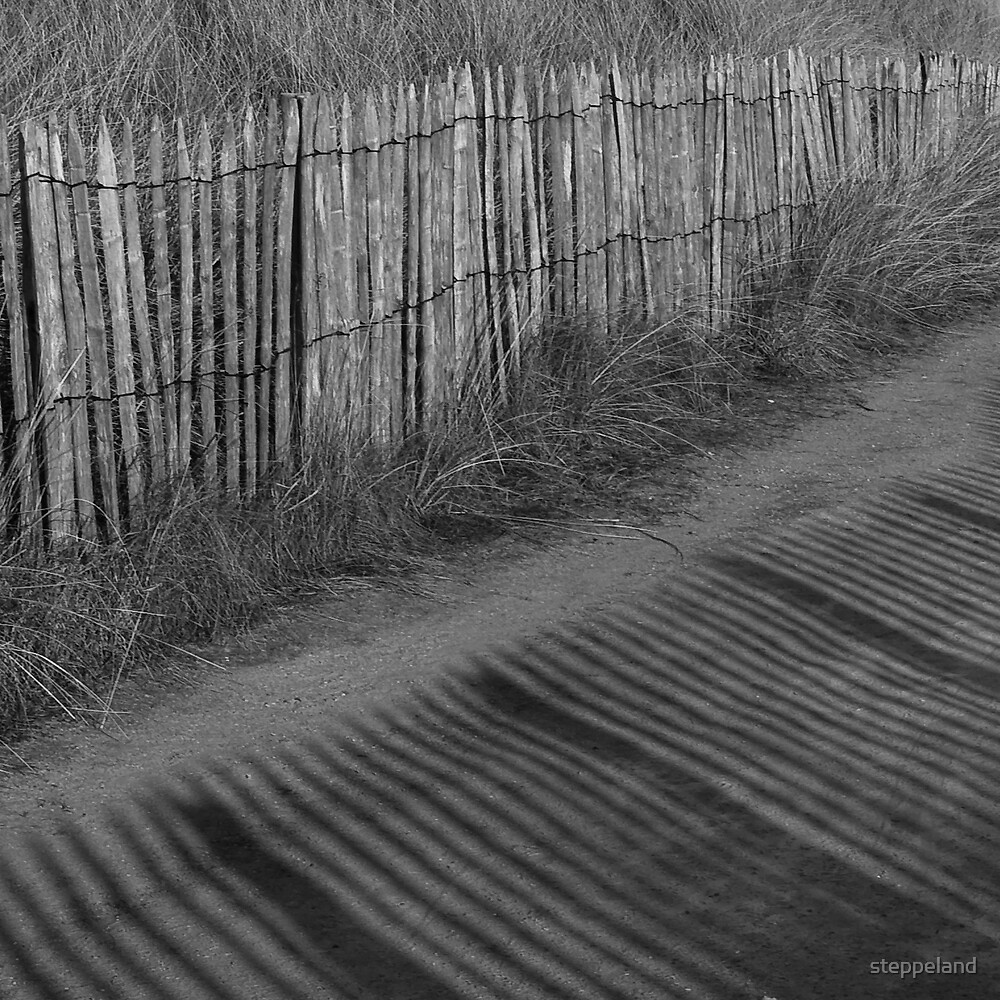 Shadow Lines by steppeland