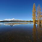landscape of lake Tekapo in south New Zealand by sf2301420max