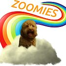 Zoomies by Tomer Aberbach