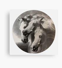 """Vintager Druck """"die Pferde des Pharaos auf Geschenken und Kleid Metalldruck"""