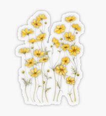 Pegatina transparente Flores amarillas de cosmos