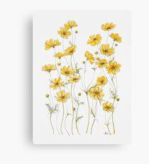 Lienzo Flores amarillas de cosmos