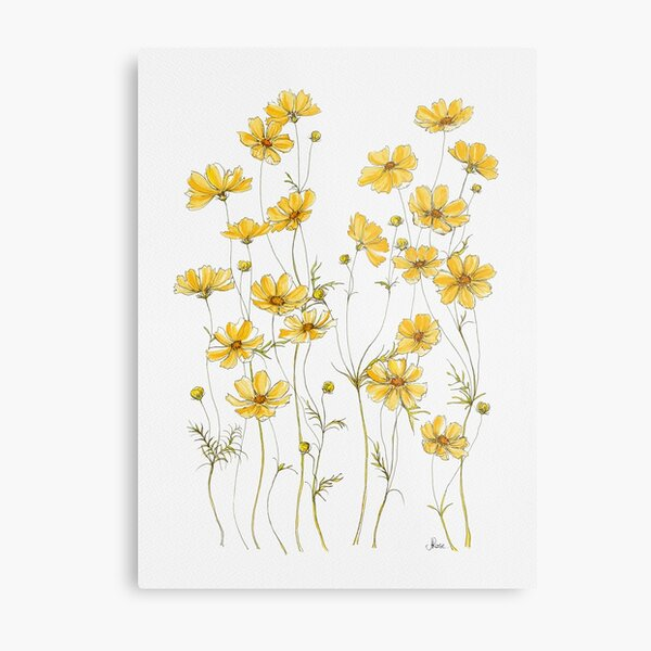 Yellow Cosmos Flowers Metal Print