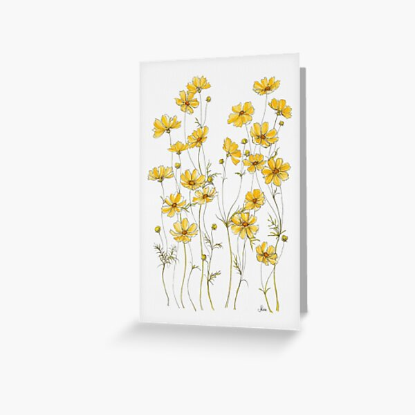 Yellow Cosmos Flowers Greeting Card