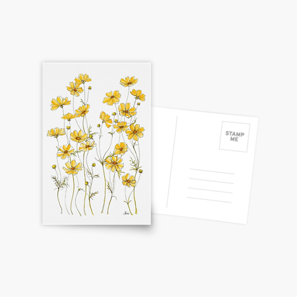 Yellow Cosmos Flowers Postcard