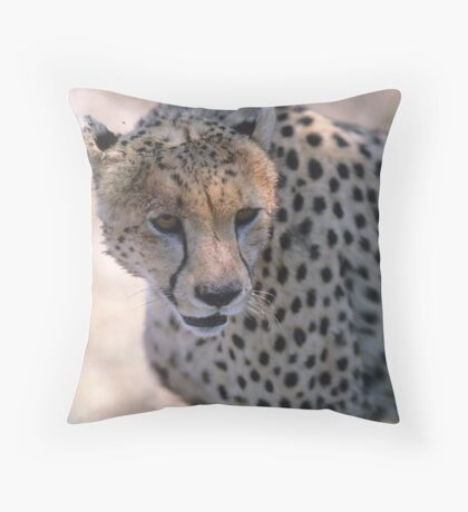 Lunch Over! Throw Pillow