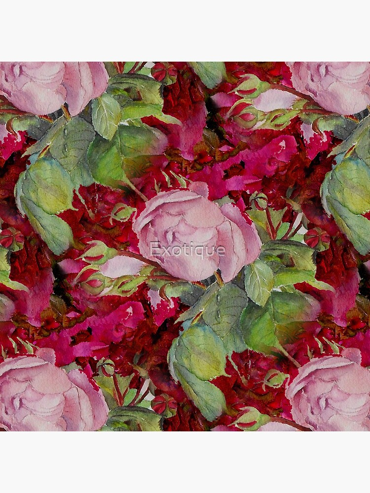Old roses by Exotique