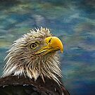 Bald Eagle Painted by Judy Vincent