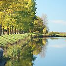 Cornwall Canal, South Bank by Mike Oxley