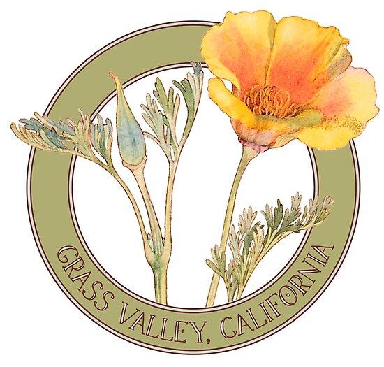 Grass Valley Poppy by codyjoseph