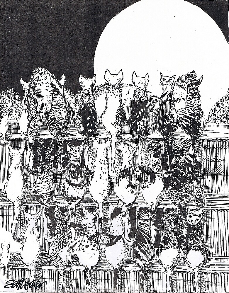 Two Dozen and One Cats by Seth  Weaver