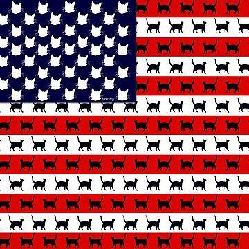Cat Flag America by gretzky