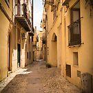 Streets of Palermo, Italy by Sunil Bhardwaj