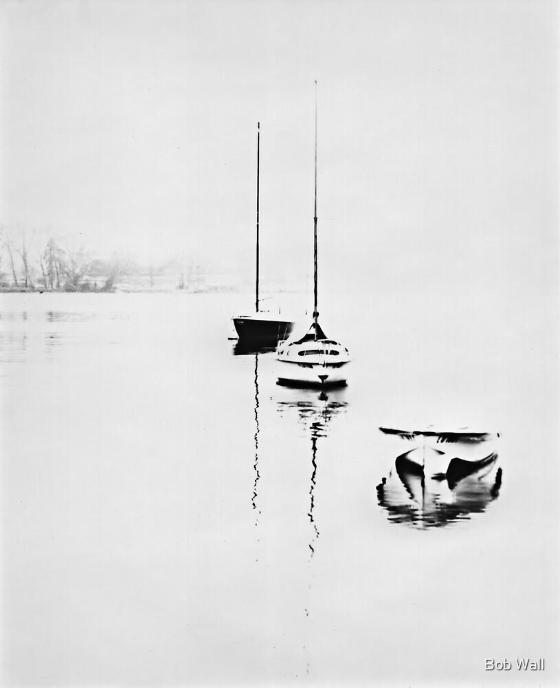 Lake Lucerne In The Fog by Bob Wall
