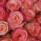 «Rosas de chicle» de My-EventHorizon