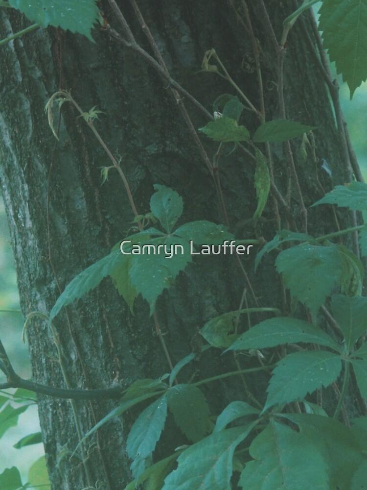 Foggy Forest by camlauffer