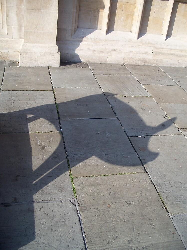 Pig Shadow by robsteadman