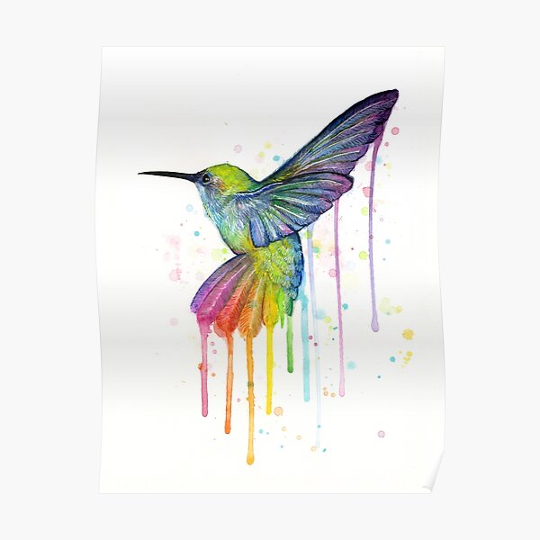 Hummingbird Watercolor Rainbow Poster