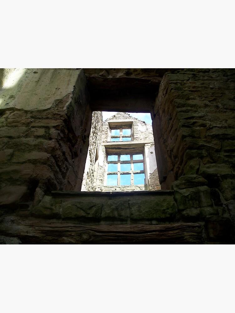 Hardwick Windows 4 by robsteadman