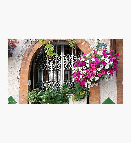 Gorgeous window Photographic Print