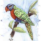 Rosella...Watercolour by judygal