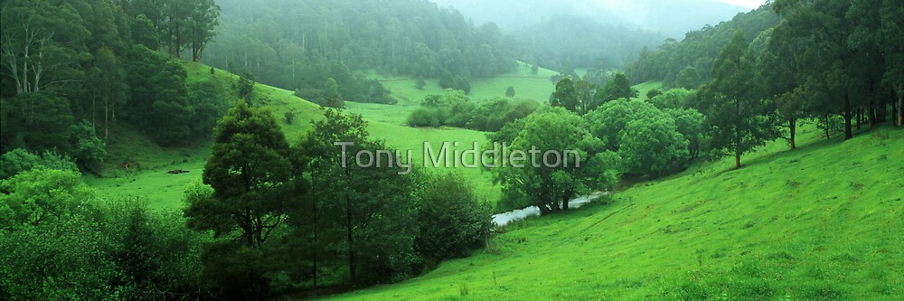 The perfect valley  by Tony Middleton