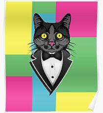 Cat in a tuxedo Poster